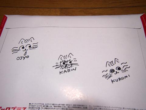2013頂き物(fromりみこ△).jpg
