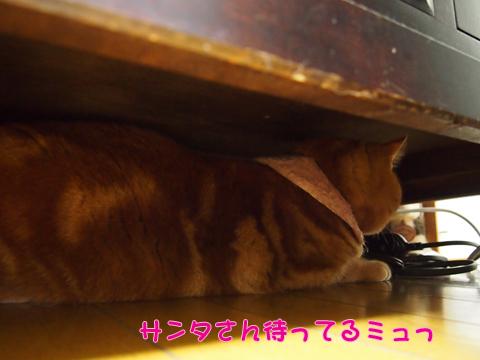 2013Xmasサンタ待ち.jpg