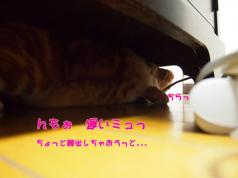2013Xmasサンタ待ち1.jpg