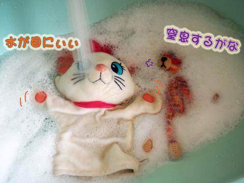 お洗濯(P&T)1.jpg
