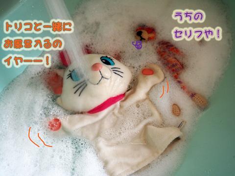 お洗濯(P&T)2.jpg
