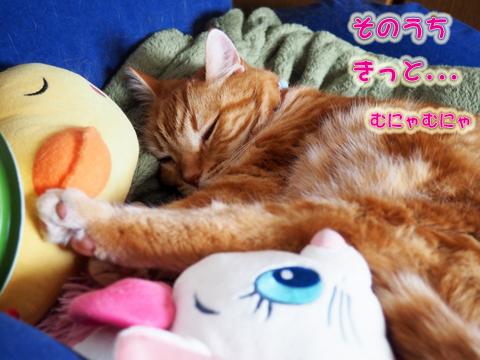 ねむねむぼんじゅ〜4.jpg