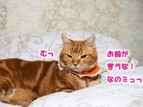 ロッティ水責め7.jpg