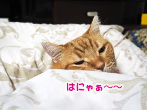 乙メン3.jpg