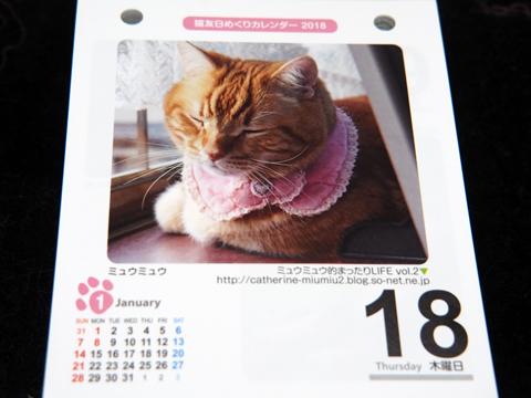 猫友カレンダー2018.jpg
