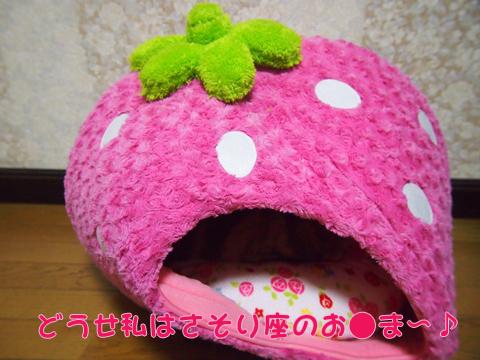 2012BDいちごドーム(ゆがみ).jpg