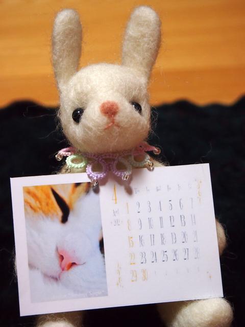 2012soramame-shop2.jpg