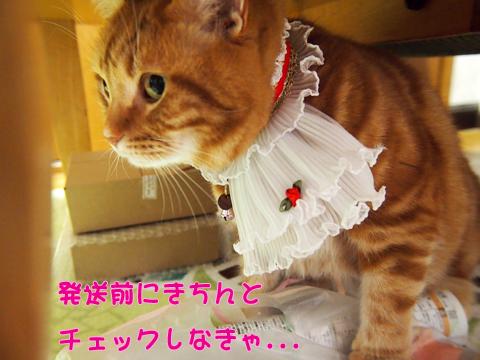 2014猫友日めくりカレンダー5.jpg