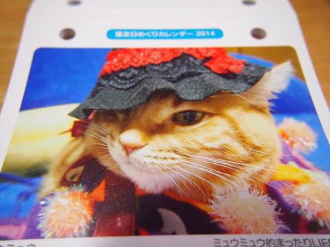 2014猫友日めくりカレンダー2.jpg