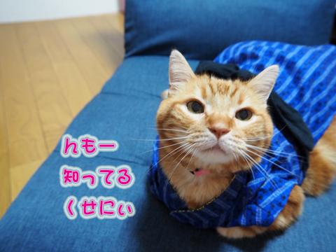 2019男前浴衣5.jpg