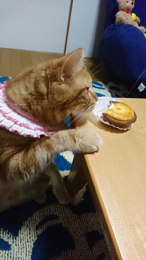 BAKEとミュウ2.jpg