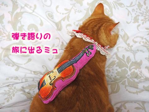 バイオリンまたたび7.jpg