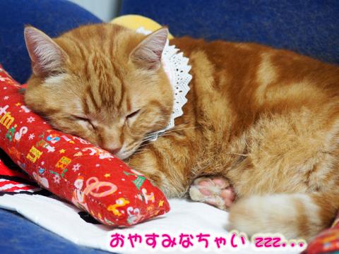 朝採りイチゴ4.jpg