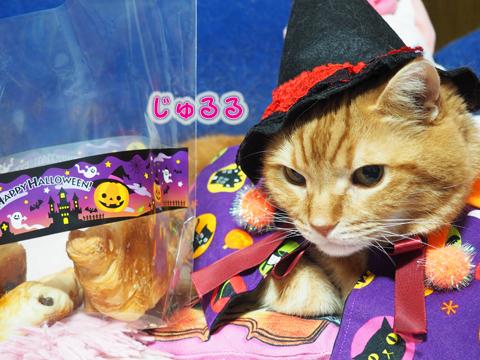 Halloween2018-4.jpg