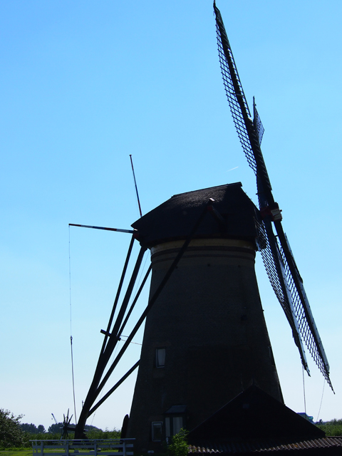 Netherlands(Kinderdijk)5.jpg